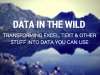 Data in the Wild: Transforming Excel, Text & Other Stuff into Data You Can Use