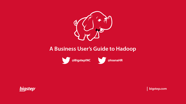 A Business User's Guide to Big Data on Hadoop