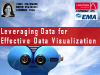 Leveraging Data for Effective Data Visualization
