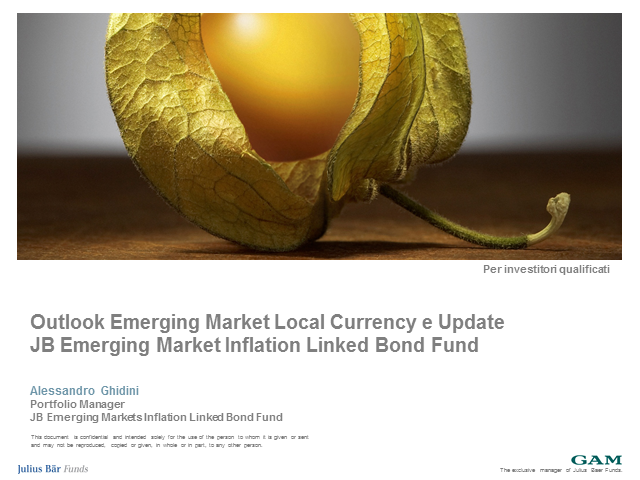 Julius Baer Emerging Markets Inflation Linked Bond Fund