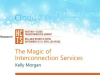 The Magic of Interconnection Services: Balancing Network Cost & Performance