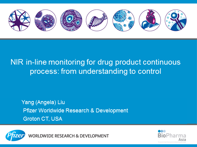 NIR In-Line Monitoring for Drug Product Continuous Process: From Understanding t