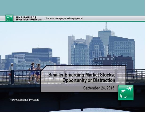 Smaller Emerging Market Stocks: Opportunity or Distraction