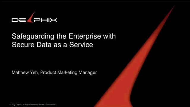 Enterprise Security with Secure Data as a Service