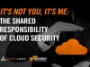 It's Not You, It's Me: The Shared Responsibility of Security in the Cloud