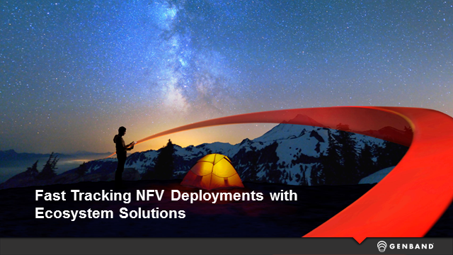 Fast Tracking NFV Deployments with Ecosystem Solutions