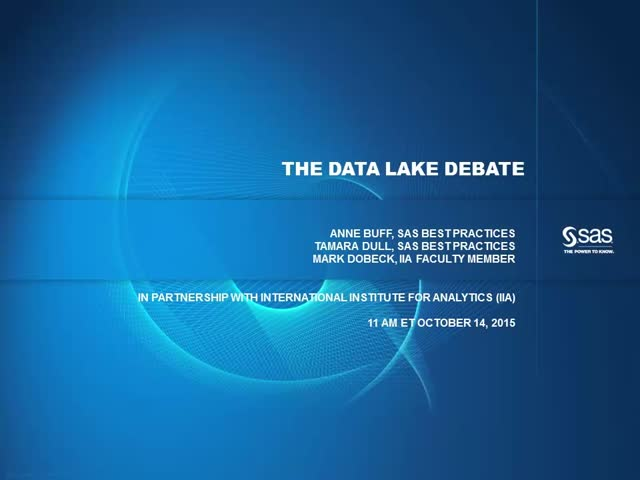 The Data Lake Debate