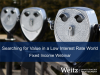 Weitz Investment Management: Searching for Value in a Low Interest Rate World