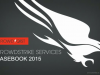 Lessons from the Trenches: Cyber Intrusion Casebook Revealed