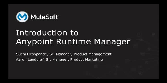 Anypoint Runtime Manager