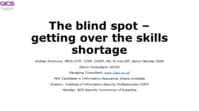The Blind Spot – getting over the skills shortage