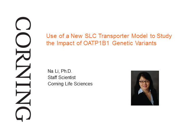 A New SLC Transporter Model to Study the Impact of OATP1B1 Genetic Variants