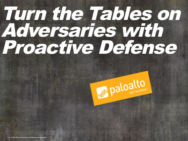 Turn the Tables on Adversaries with Proactive Defense