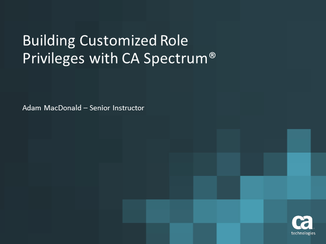 Building Customized Role Privileges with CA Spectrum