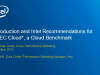 Innovating Cloud Benchmarking with the New SPEC Cloud* Benchmark
