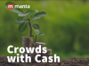 Crowds with Cash: Alternative Funding and Lending