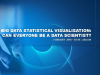 Big Data Statistical Visualisation: can everyone be a Data Scientist?