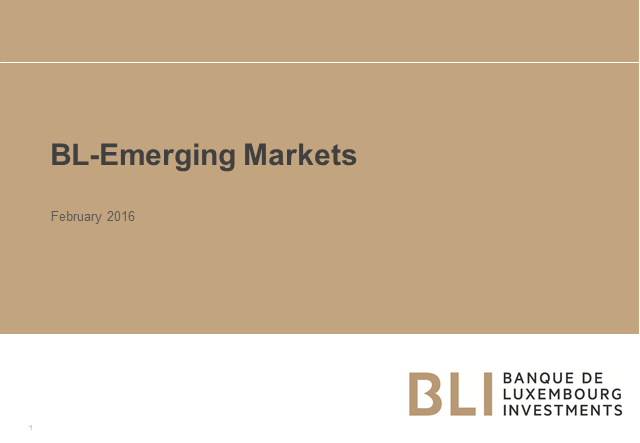 Quality investments in Emerging Markets + fund update