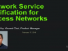 Network service verification for access network