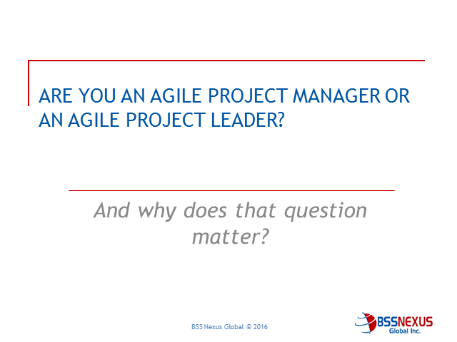 Are you an Agile Project Manager or an Agile Project Leader?