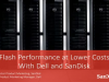 Flash Performance at Lower Costs with Dell and SanDisk