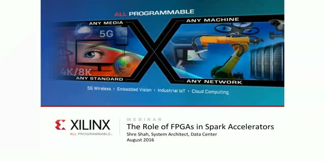 The Role of FPGAs in SparK Accelerators