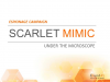 Scarlet Mimic: Unit 42 Reveals Cyber Espionage Campaign