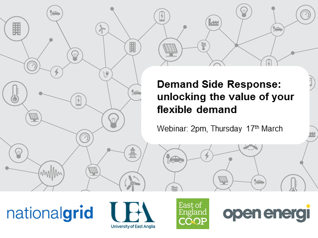 Demand Side Response: unlocking the value of your flexible demand
