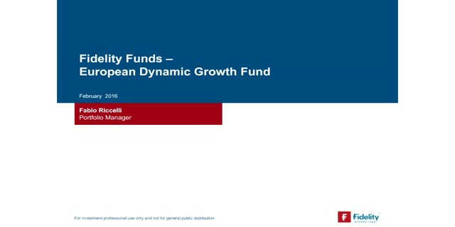 FF European dynamic growth - taking stock after a year of strong performance
