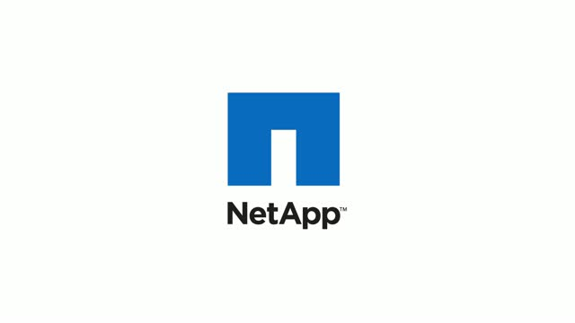 "NetApp 1"" Video - Smart Cities"