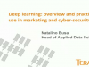 Deep learning: overview and practical use in marketing and cyber-security