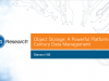 Object Storage: A Powerful Platform for 21st Century Data Management