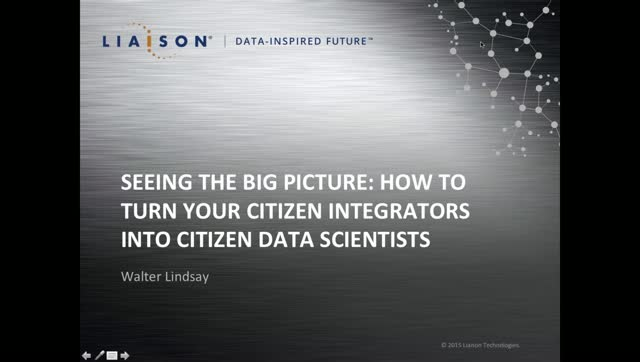 Seeing the Big Picture: How to Turn Your Citizen Integrators Into Citizen Data S