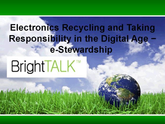 e-Stewardship: Taking Responsibility in the Information Age