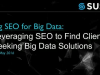 Big SEO for Big Data: Leveraging SEO to Find Clients Seeking Big Data Solutions