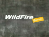 Why Forrester named WildFire the leader, and the market agreed!