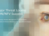 A Major Threat Looms to CSP and Enterprise SDN/NFV Success