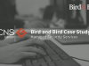 Case study: Managed Security Services