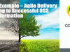 Case Example – Agile Delivery Leading to Successful OSS Transformation