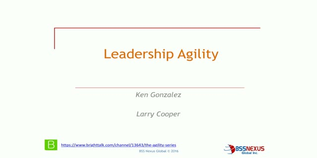 Leadership agility: why it matters and how it changes our perspective