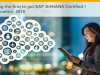 Be among the first to get SAP S/4HANA certified!