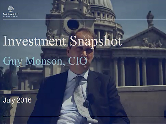 Investment Snapshot - July 2016