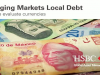 Emerging Markets Local Debt - How we evaluate currencies