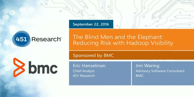 The Blind Men and the Elephant: Reducing Risk with Hadoop Visibility