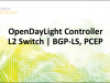 OpenDaylight Controller: Redefining SDN through Open Source