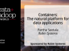 Container: The Natural Platform for Data Applications
