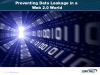 Preventing Data Leakage in a Web 2.0 World