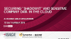 "Securing ""Shadow IT"" and Sensitive Company Data in the Cloud"