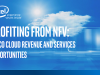 Profiting from NFV: Telco Cloud Revenue and Services Opportunities
