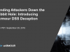 Sending Attackers Down the Rabbit Hole: Introducing vArmour DSS Deception